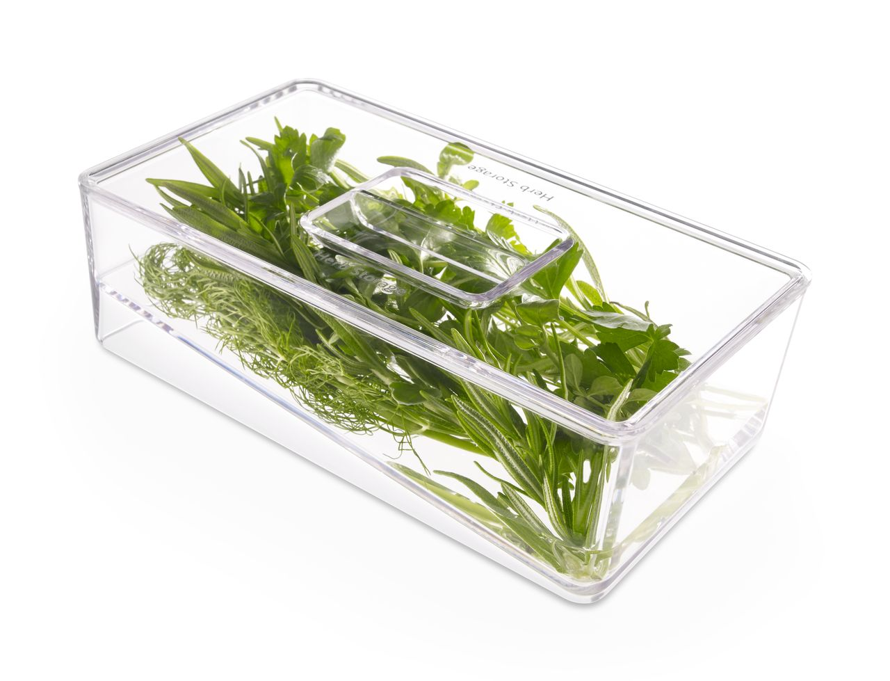 Best Ways to Preserve your Herbs before Winter